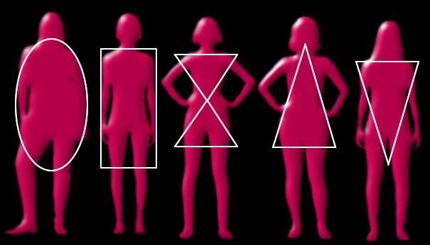 formas geométricas do corpo humano