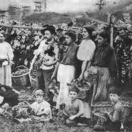 Saiba como começou a imigração italiana na Serra gaúcha